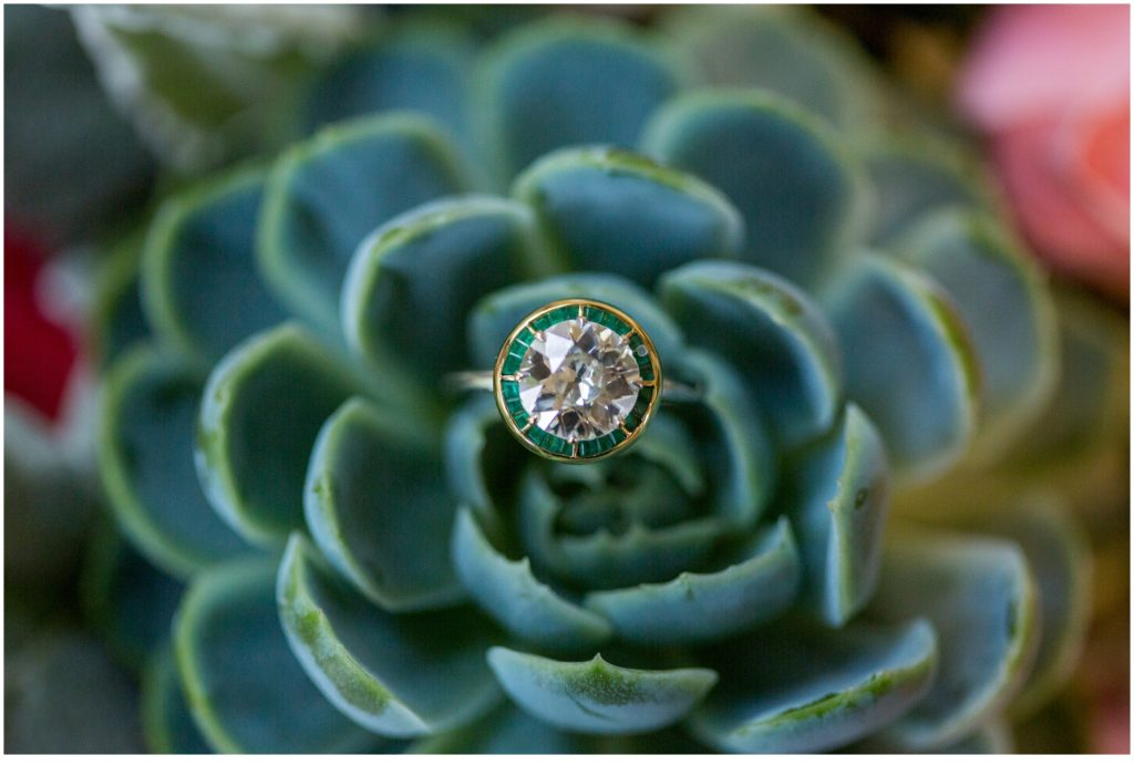 ring on succulent - Jill and Kevin's Intimate Wedding at Hidden Pond, Kennebunkport